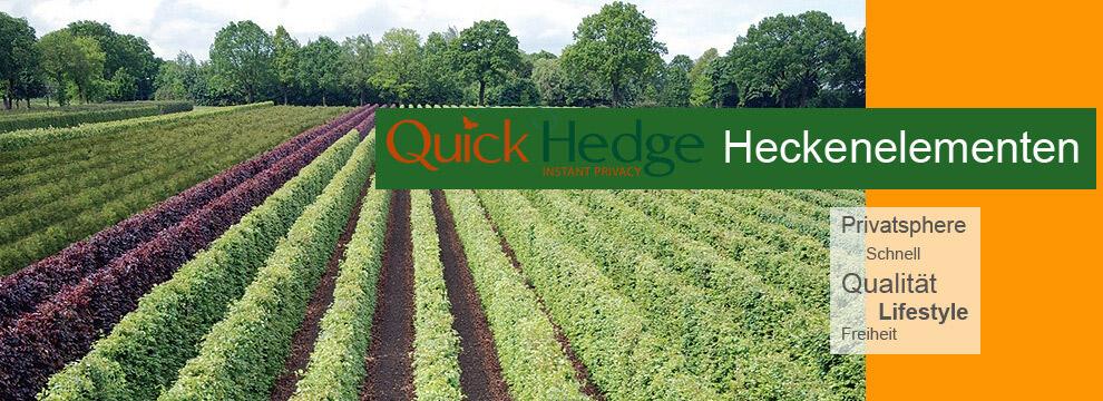 Quickhedge